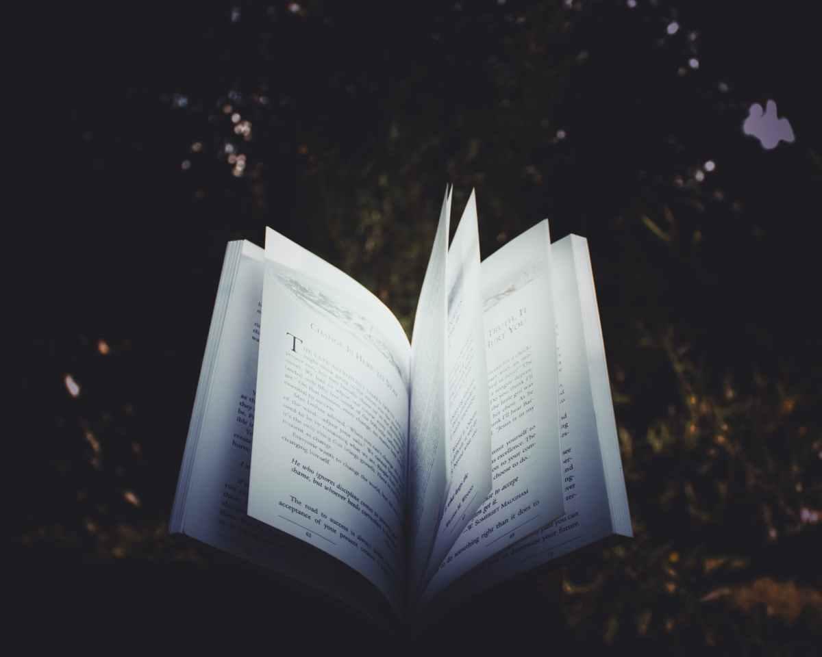 La poesia comenecessità