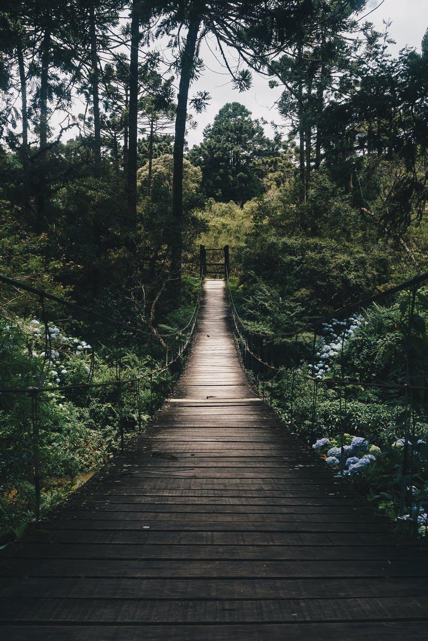 Oltre il giardino – IlVeliero